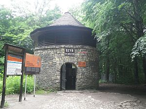 Black Trout Adit - Entrance in Sylwester shaft