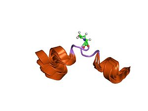 Eledoisin - Image: PDB 1mxq EBI