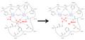 PP1 mechanism for myosin phosphatase.png