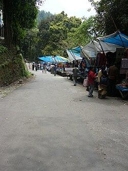 Padmaja Naidu Himalayan Zoological Park.JPG