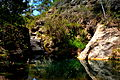 Parc del Foix - 2.jpg