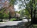 Park Avenue, Wakefield MA.jpg