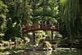 Park Szczytnicki, Ogród Japoński foto B.Maliszewska.jpg