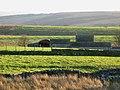 Pastures near War Carr - geograph.org.uk - 647641.jpg