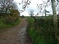 Path to Thack Moor - geograph.org.uk - 1560326.jpg