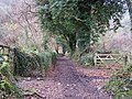 Path towards Belstone - geograph.org.uk - 1092482.jpg