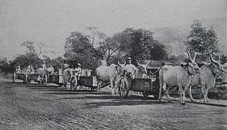 Patiala State Monorail Trainways - One team of bullocks can haul in one monorail truck as much as ten teams and wagons over a macadam road