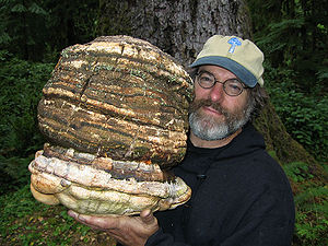 Paul Stamets - Paul Stamets holding Fomitopsis officinalis