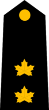 Peel Police - Inspector (E).png