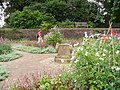 Pembroke Lodge Gardens - geograph.org.uk - 508826.jpg