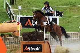 Peter Thomsen et l'holsteiner Horseware's Barny aux jeux équestres mondiaux de 2014.