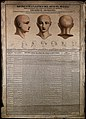 Phrenological chart with three perspectives of a head and sk Wellcome V0009524.jpg