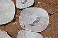 Pierres à meuler-Kota.jpg