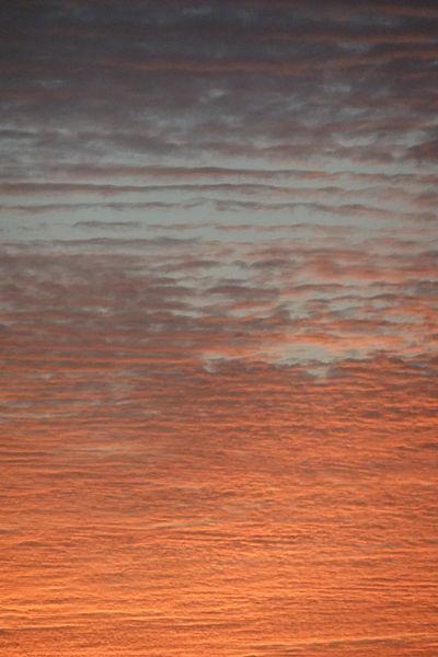 צבע השמיים