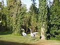 PikiWiki Israel 27979 Hacienda hotel in Maalot.JPG