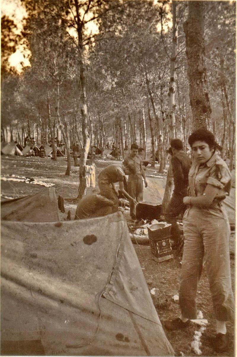 מחנה 80