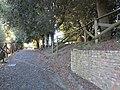 Poggio di Rocca, Montopoli, 9.JPG