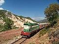 Pogradec Railway Qukes.jpg