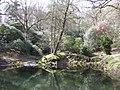 Pond in Park Wood - geograph.org.uk - 605518.jpg