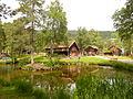 Pond in Romsdal Museum, Molde. 2011-07-06.JPG