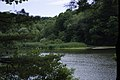 Porter Lake Trail, Forest Park, Springfield, Massachusetts - panoramio (2).jpg