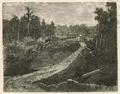 Puerto Montt - Camino a la laguna de Llanquihue - Chile Ilustrado (1872).png