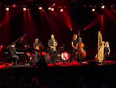Quadro Nuevo - Leverkusener Jazztage 2015-3204.jpg