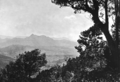 Queensland State Archives 1185 Looking at Mount Warning from Best Of All Lookout Springbrook South Queensland c 1930.png