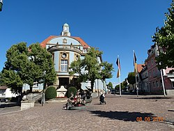 Town hall and musicians' fountain in Donaueschingen