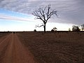 Red road and blue sky (6822760635).jpg