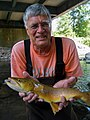 Researcher with large brown trout from Esopus Creek.jpg