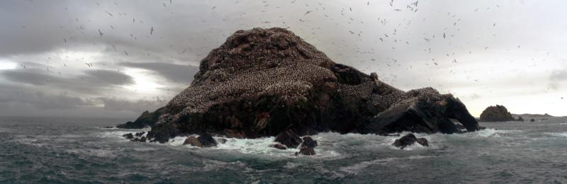Reserve Naturelle 7 îles.tif