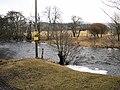 River Ardle - geograph.org.uk - 142613.jpg