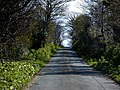 Road, Ballaghennie - geograph.org.uk - 787275.jpg