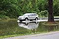 Roman Forest Flooding - 4-18-16 (25910023414).jpg