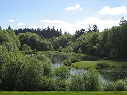 Rood Bridge Park pond.JPG