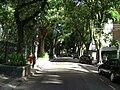 Rua Dona Mariana (1).jpg
