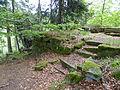 Ruine Hirschstein xy 3.JPG