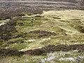 Ruins of Sheilings - geograph.org.uk - 1279356.jpg