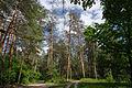Rusko-Polansky reserve.JPG