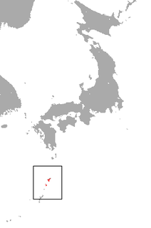 Ryukyu shrew species of mammal
