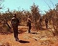 SADF-Operations 4.jpg