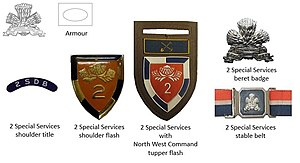 2 Special Service Battalion - SADF era 2 Special Services Battalion insignia