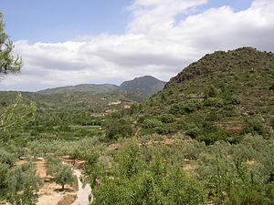 Serra d'Espadà - La Vall d'Almonesir, in the heart of the Range