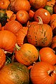 SK Sky Meadows Pumpkins (5136665299).jpg