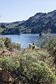 Saguaro Lake Hiking Trail, Tonto National Park, Arizona - panoramio (74).jpg