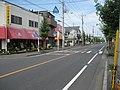 Saitamakendo no111 in kawaguchi city.jpg