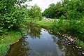 Saline May 2015 42 (Saline River).jpg