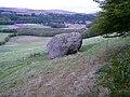 Samson's Stone - geograph.org.uk - 60915.jpg