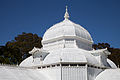 San Francisco Conservatory of Flowers-22.jpg